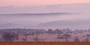 JOWA-landscape (19)