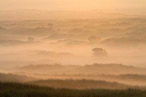 JOWA-landscape (21)