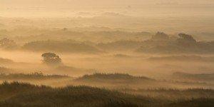 JOWA-landscape (22)
