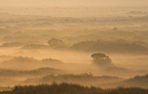 JOWA-landscape (24)