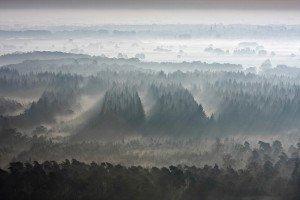 JOWA-landscape (26)