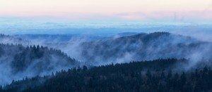JOWA-landscape (29)