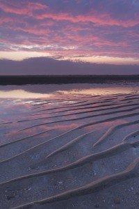 JOWA-sea- (10)